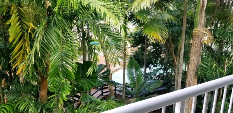 rental property Cairns